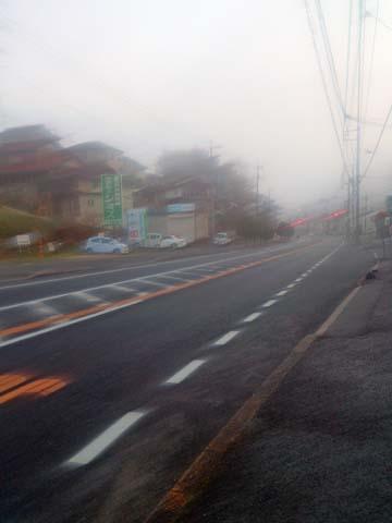 今朝は雨が降っていて霧の中のウォーキングが気持ちいい